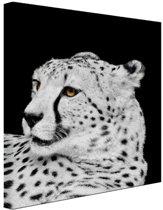 Luipaard zwart-wit  Canvas 40x60 cm - Foto print op Canvas schilderij (Wanddecoratie woonkamer / slaapkamer) / Dieren Canvas Schilderijen