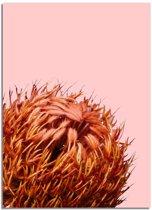 Oranje bloem poster DesignClaud - Bloemstillevens - Rood Oranje- A4 + Fotolijst zwart