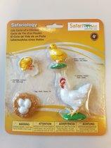 Levensloop van een kip in 4 mini figuren