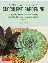 A Beginner's Guide to Succulent Gardening