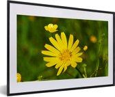 Foto in lijst - Een gele morgenster fotolijst zwart met witte passe-partout 60x40 cm - Poster in lijst (Wanddecoratie woonkamer / slaapkamer)