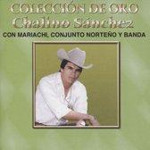 Coleccion de Oro: Con Mariachi Conjunto Norteno Y