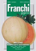 Melone Rampicante Zuccherino - Meloen  - set van 6 stuks