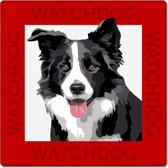Border Collie waakbord