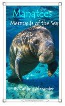 Manatees: Mermaids of the Sea