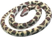 Halloween - Rubberen python slang 66 cm