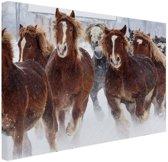Hardlopende paarden in de sneeuw Canvas 30x20 cm - Foto print op Canvas schilderij (Wanddecoratie)