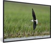 Foto in lijst - Steltkluut vliegt over het water fotolijst zwart 60x40 cm - Poster in lijst (Wanddecoratie woonkamer / slaapkamer)