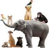 KEK AMSTERDAM Muursticker Safari Friends Set Elephant Xl