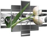 Glasschilderij Tulp | Grijs, Wit, Groen | 100x70cm 5Luik | Foto print op Glas |  F004684