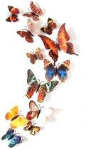 3D vlinders | Mix herfst