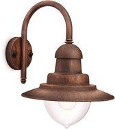 Philips Raindrop Wandlamp brons 16520616