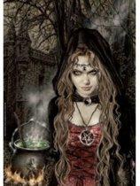 Witch (500)