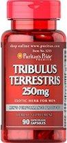 Puritan's Pride Tribulus Terrestris 250mg