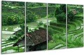 Glasschilderij Natuur   Groen, Wit,   160x80cm 4Luik   Foto print op Glas    F001405