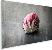 Verse roodlof tegen een grijze achtergrond Plexiglas 180x120 cm - Foto print op Glas (Plexiglas wanddecoratie) XXL / Groot formaat!