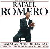 Arte De Flamenco Vol. 18