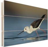 Steltkluut drinkt water Vurenhout met planken 120x80 cm - Foto print op Hout (Wanddecoratie)