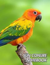 Sun Conure Notebook: Sun Parakeet - Aratinga solstitialis - Composition Book 150 pages 8.5 x 11 in. - Wide Ruled - Writing Notebook - Lined