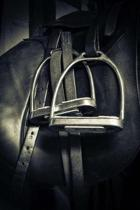 Silver Stirrups Equestrian Sports Horse Journal