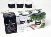 Buzzy® Kruiden Set drie witte krijt potten