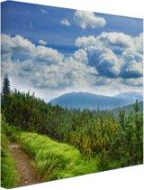 Een bospad in de bergen Canvas 100x100 cm - Foto print op Canvas schilderij (Wanddecoratie)