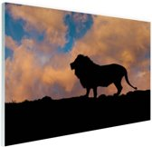 Silhouet leeuw zonsondergang Glas 90x60 cm - Foto print op Glas (Plexiglas wanddecoratie)