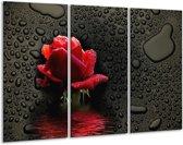 Canvas schilderij Roos | Rood, Zwart, Wit | 120x80cm 3Luik