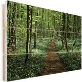 Beukenbos in het Nationaal park Stenshuvud in Zweden Vurenhout met planken 90x60 cm - Foto print op Hout (Wanddecoratie)