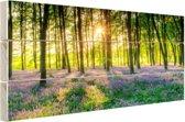 FotoCadeau.nl - Kleurrijke bloemen in het bos Hout 80x60 cm - Foto print op Hout (Wanddecoratie)