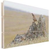 Een patrijs op een rots Vurenhout met planken 90x60 cm - Foto print op Hout (Wanddecoratie)