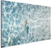 Haai in ondiep water Aluminium 120x80 cm - Foto print op Aluminium (metaal wanddecoratie)