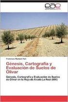 Genesis, Cartografia y Evaluacion de Suelos de Olivar