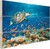 Koraalrif met schildpad Hout 30x20 cm - klein - Foto print op Hout (Wanddecoratie)