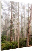 Bos Black Spur Australie Hout 20x30 cm - klein - Foto print op Hout (Wanddecoratie)
