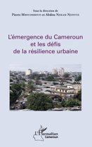 L'émergence du Cameroun et les défis de la résilience urbaine
