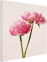 Roze Bloesem Canvas 60x40 cm - Foto print op Canvas schilderij (Wanddecoratie woonkamer / slaapkamer) / Bloemen Canvas Schilderijen