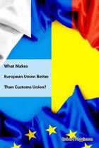 What Makes European Union Better Than Customs Union?