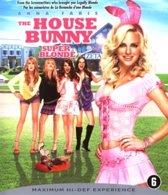 House Bunny (dvd)