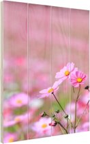 Cosmos bloem Hout 40x60 cm - Foto print op Hout (Wanddecoratie)