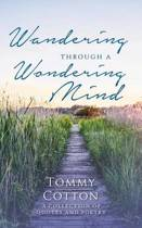 Wandering Through a Wondering Mind