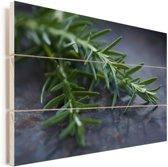 Rozemarijn op een tafel Vurenhout met planken 90x60 cm - Foto print op Hout (Wanddecoratie)