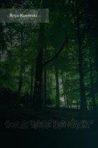 Horstheide bei Nacht