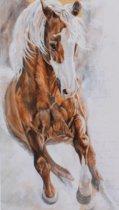 Horka Wenskaart Bruin Paard 12,5 X 18 Cm