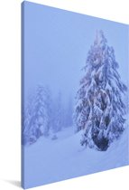 Kerstboom bij het Canadese Grouse Mountain in Noord-Amerika Canvas 60x90 cm - Foto print op Canvas schilderij (Wanddecoratie woonkamer / slaapkamer)
