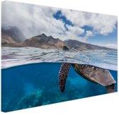 Schildpad bij eiland Canvas 60x40 cm - Foto print op Canvas schilderij (Wanddecoratie)