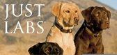 Labrador Retriever Kalender 2020 Mini