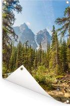 Noord-Amerikaans bos bij het Moraine Lake in Canada Tuinposter 60x90 cm - Tuindoek / Buitencanvas / Schilderijen voor buiten (tuin decoratie)