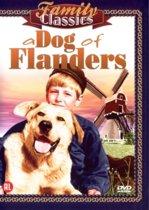 Dog Of Flanders (dvd)