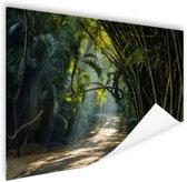 Rijen bamboe in Azie Poster 180x120 cm - Foto print op Poster (wanddecoratie woonkamer / slaapkamer) XXL / Groot formaat!